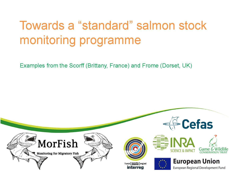 Towards a standard salmon stock monitoring programme